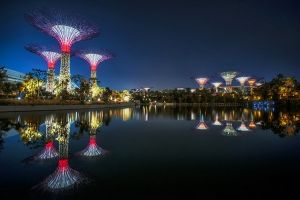 Парк Gardens by the Bay в Сингапуре